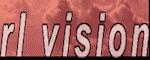 RL Vision Coupon Codes