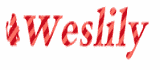 Weslily Coupon Codes