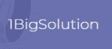 1BigSolution Coupon Codes
