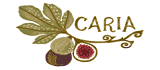 Fig Of Caria Coupon Codes